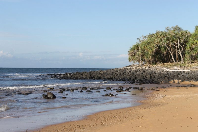 Mon Repos Beach