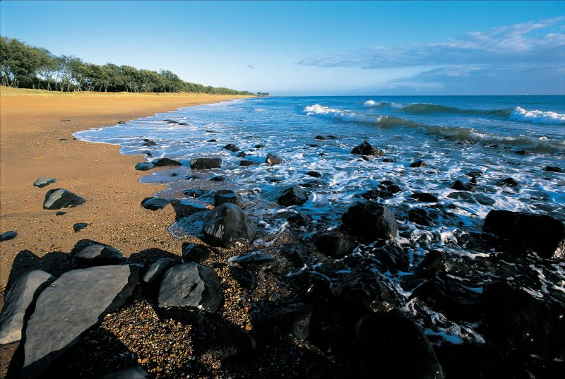 Mon Repos Beach with black rocks in foreground