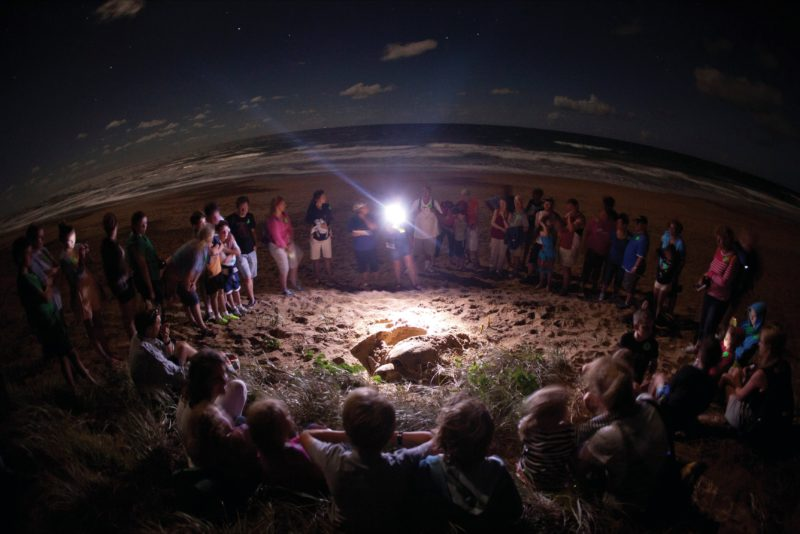 Group of people and rangers standing in a ring around nesting loggerhead turtle.