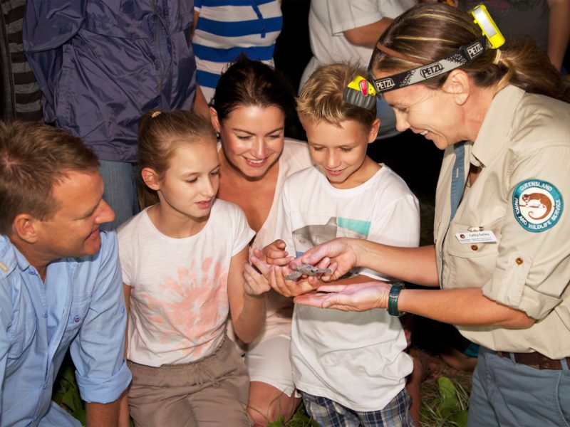 Park Rangers showing family newly hatched turtle.