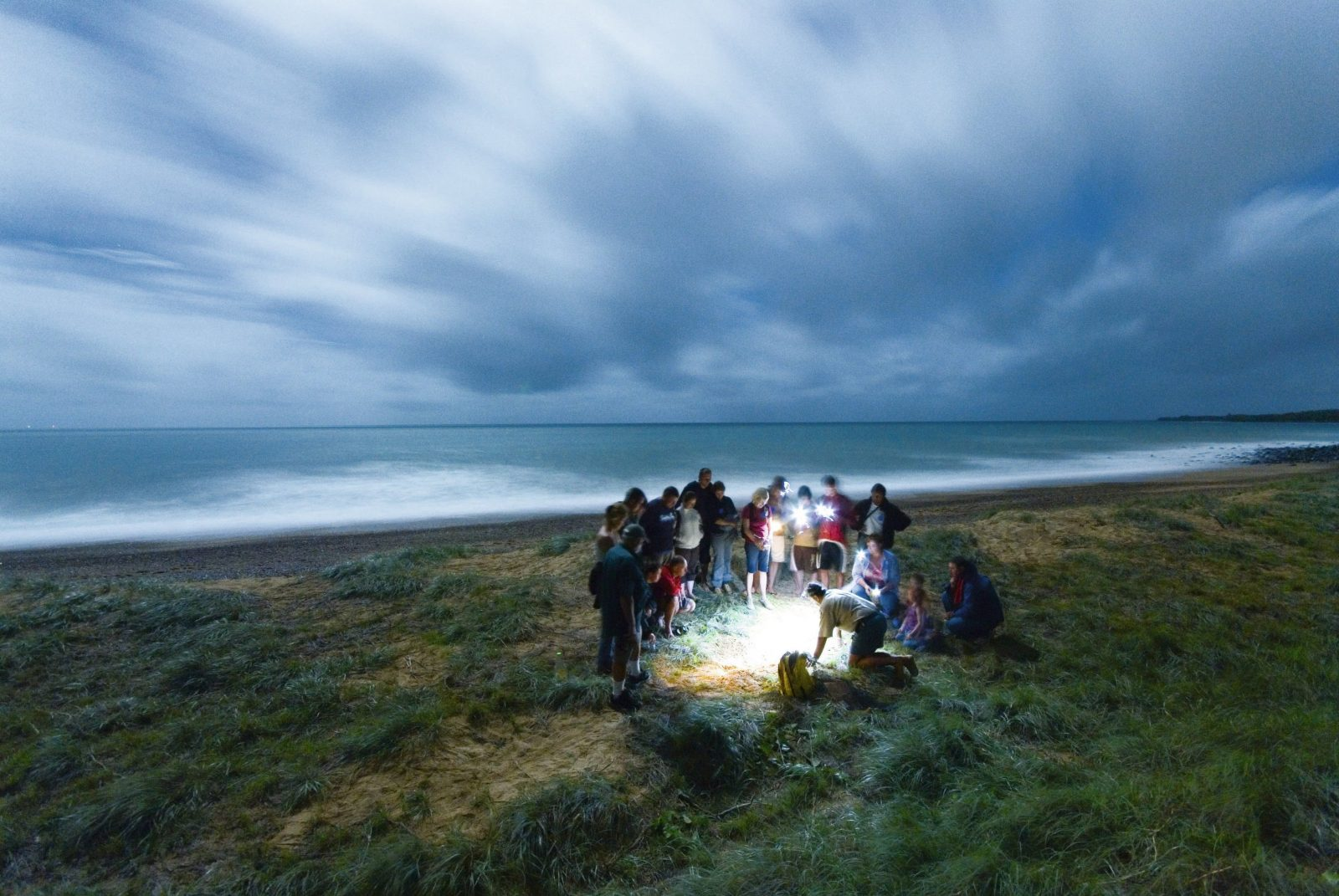 A group of people standing around a sandpit with a turtle, illuminated by torchlight.