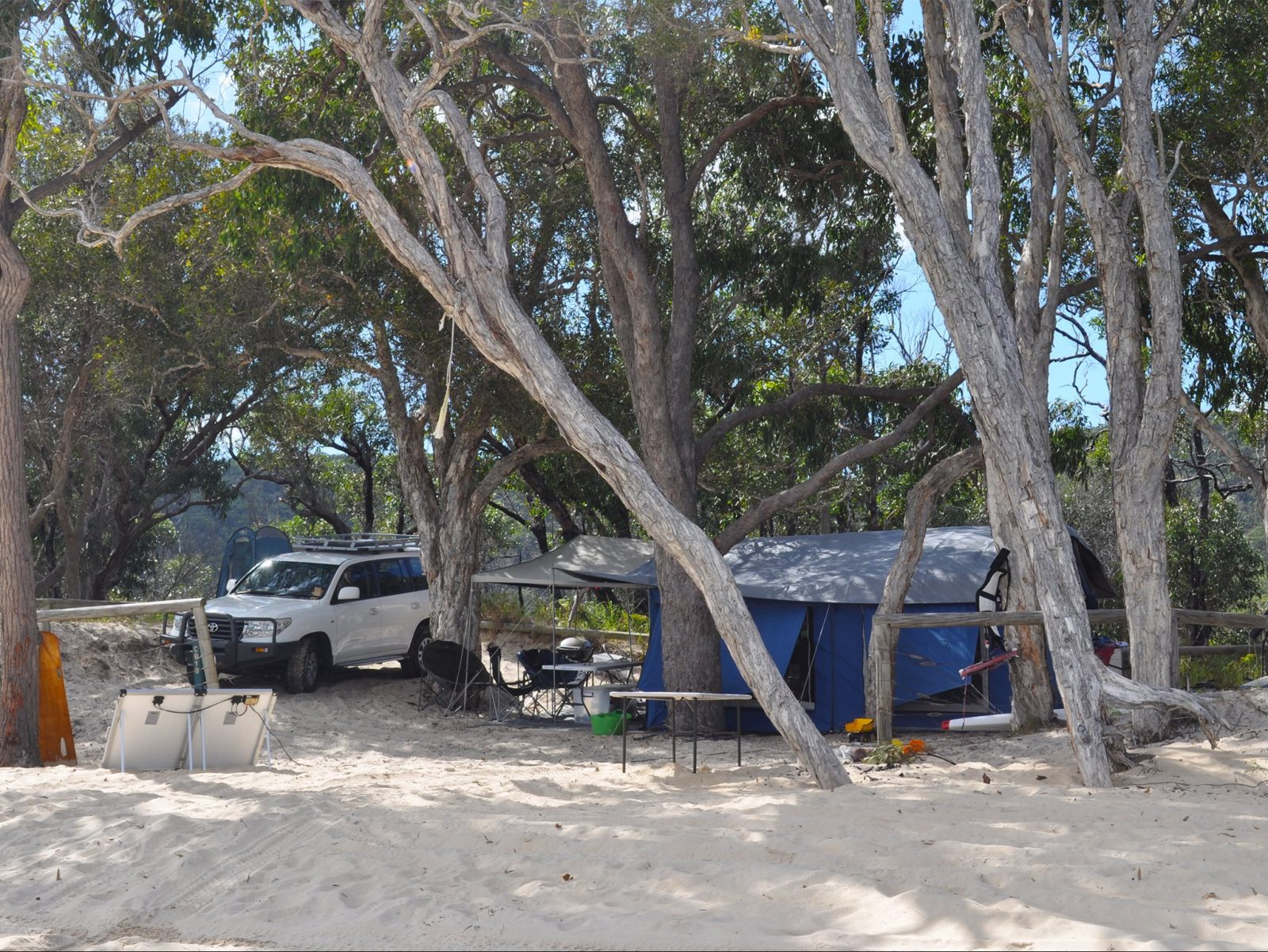 Tent and 4WD under trees on beach.