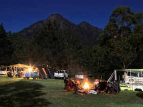 Camping at Mt Barney Lodge