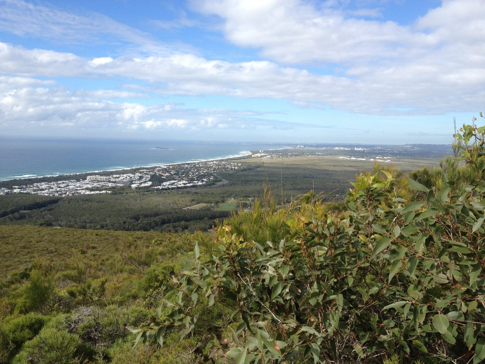 View over coastal plain from vantage point on hill with ocean in the distance.