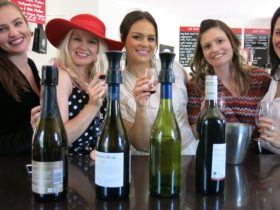 Mount Tamborine Wine Tasting Tour