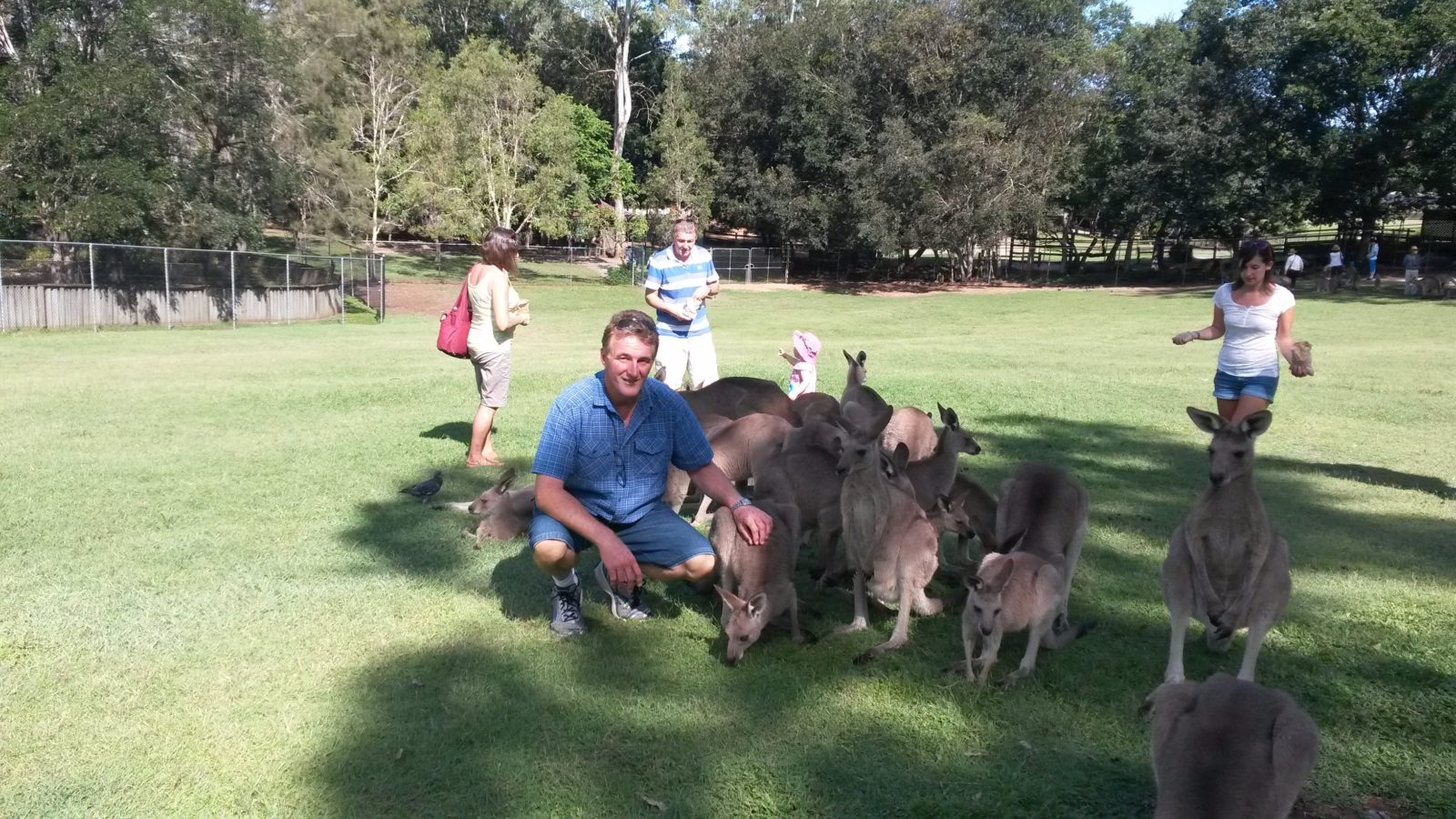 Val with friends at the Koala Sanctuary