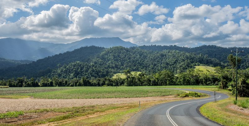 Country road with view of Mt. Bartle Frere