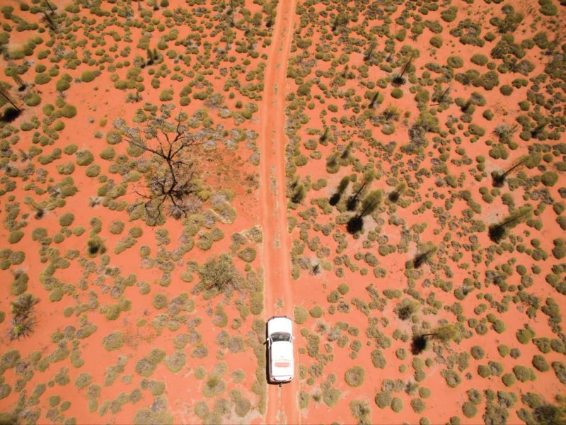 Vehicle surroudned by spinifex bushes