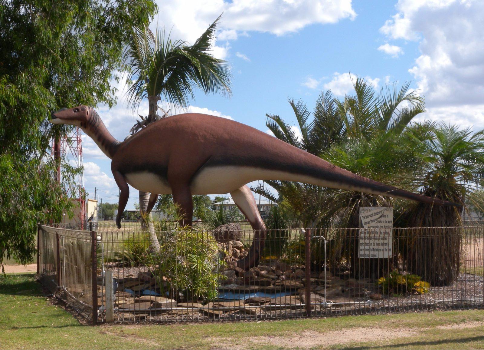 Muttaburrasaurus Langdoni Replica