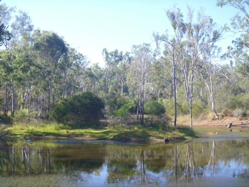 Nanango Fauna Reserve