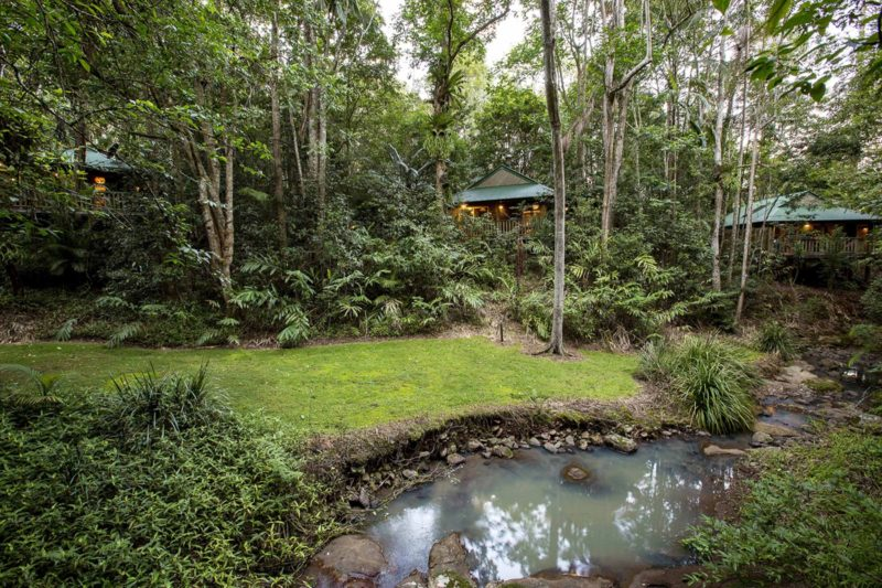 Romantic rainforest retreat