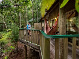Rainforest Views from your verandah