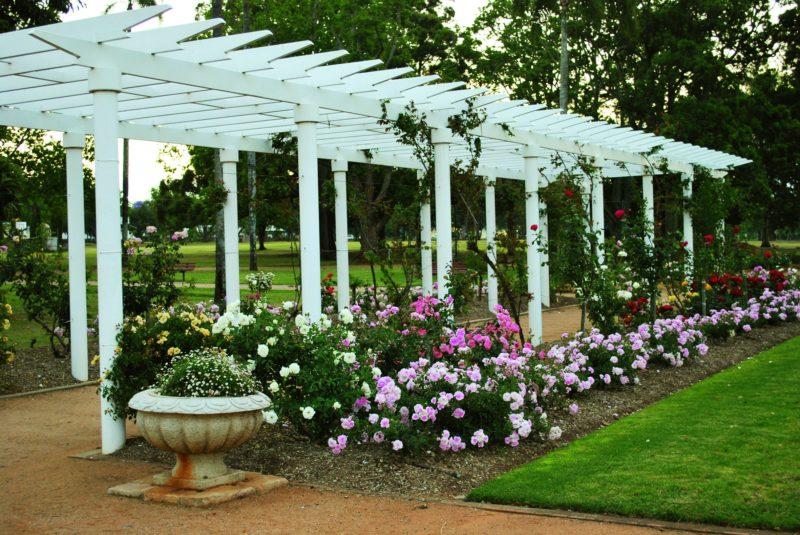 Newtown Rose Garden