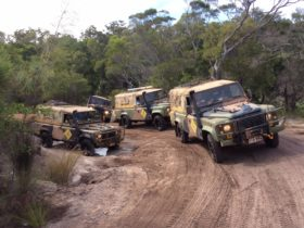 No Limits vehicles on a Cape York Tagalong Tour