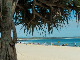 Noosa Caravan Park Accommodation