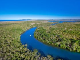 Noosa Everglades, Noosa, Sunshine Coast