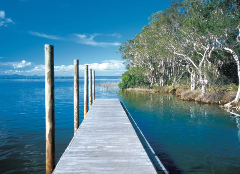Mangrove Boardwalk Circuit, Lake Cootharaba, Kinaba, Sunshine Coast