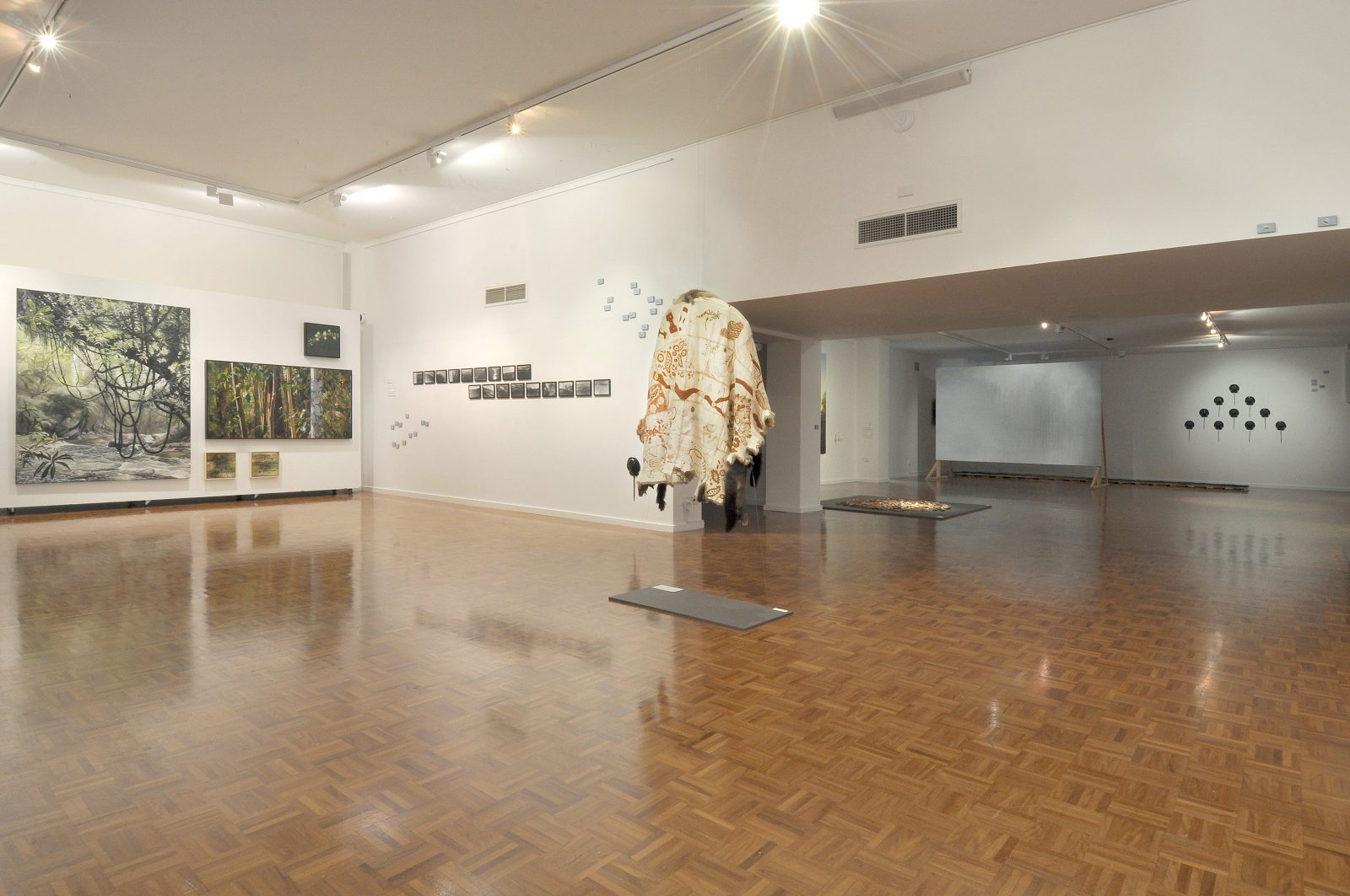 Open gallery space with indigenous animal skin cape hanging from ceiling and forest scene paintings
