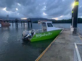 Nq hire Boats Charlie 1