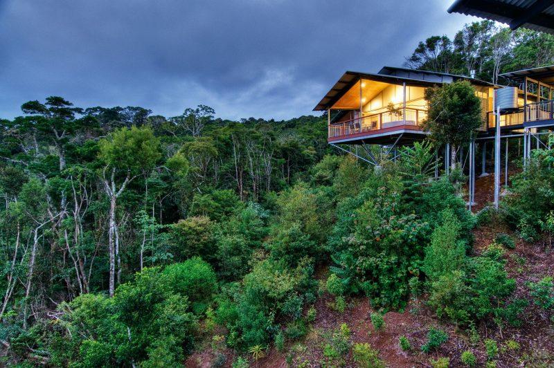 O'Reilly's Villas Rainforest View