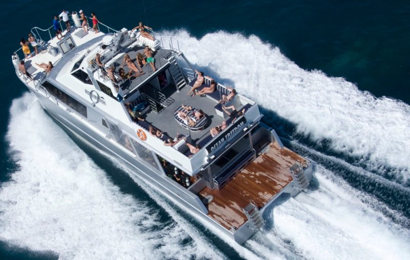 Ocean Freedom - Fast and sleek
