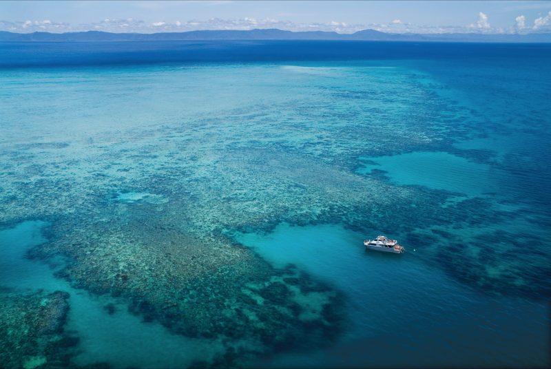 """Ocean Freedom : """"Wonder Wall """" reef site"""