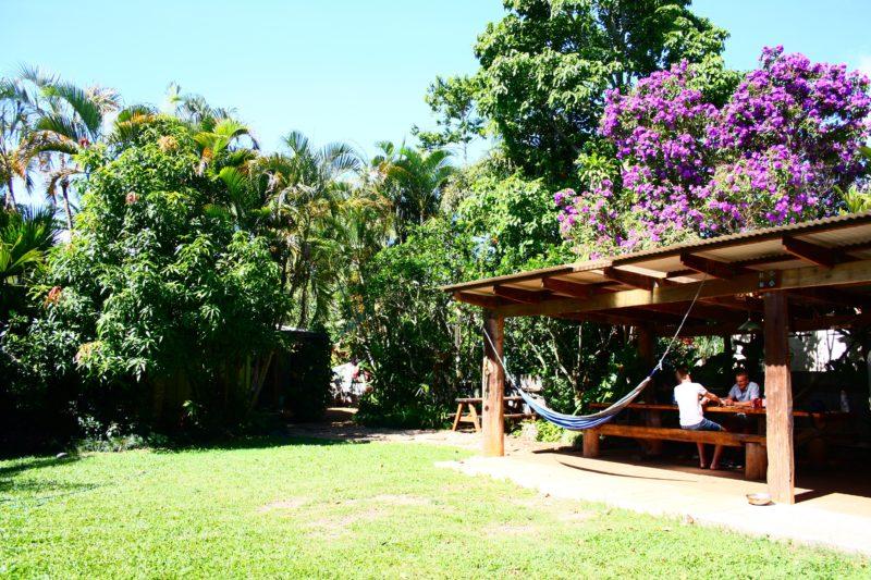 Backyard - On the Wallaby Lodge