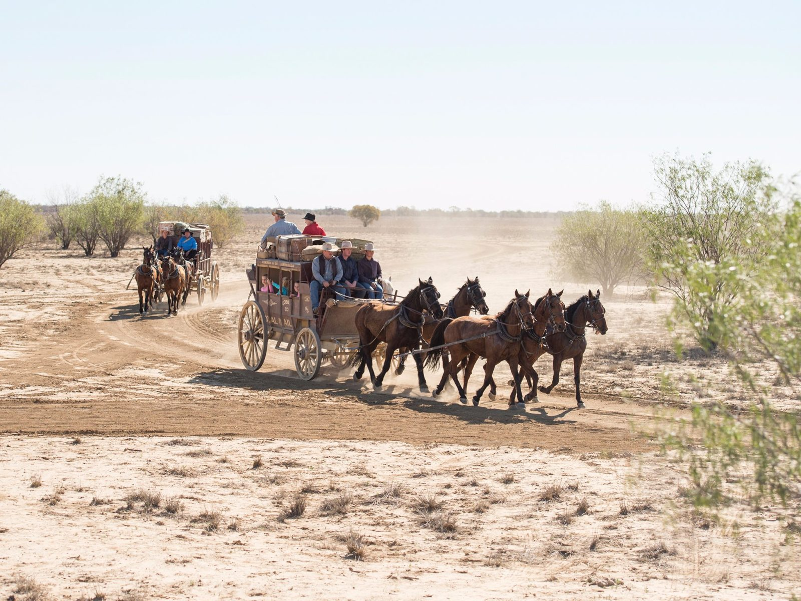 Outback Pioneers Cobb and Co Stagecoach