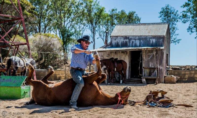 Outback Stockman's Show