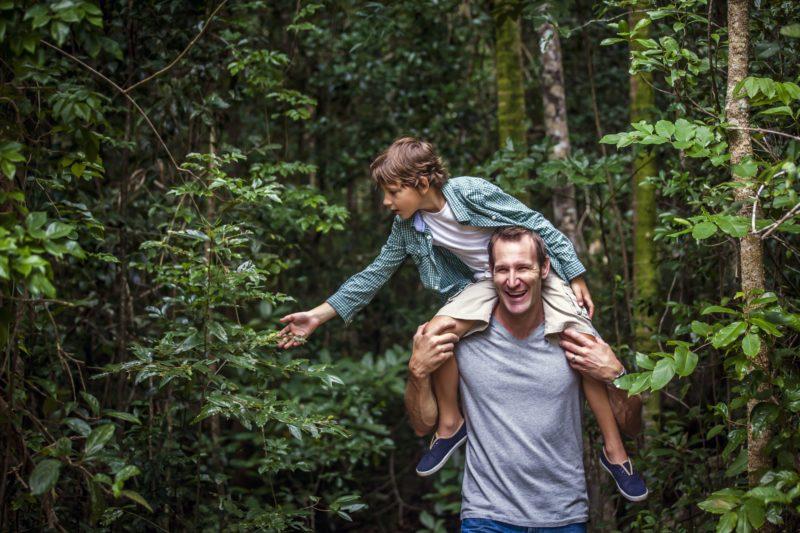 Rainforest Paluma