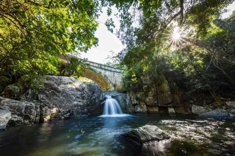 Paluma and Crystal Creek Rainforest