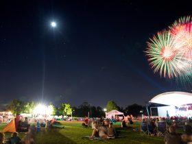 Park Vibes - Fireworks Finale