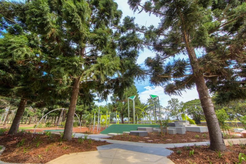 Shaded play area under large trees at Pine Rivers Park