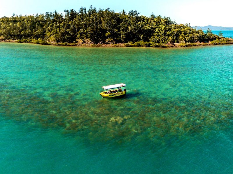Airlie Beach Glass Bottom Boat - 70 min discovery tour of local coral reefs in The Whitsundays.