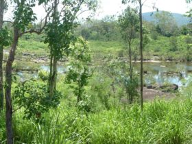Pioneer River, Marian