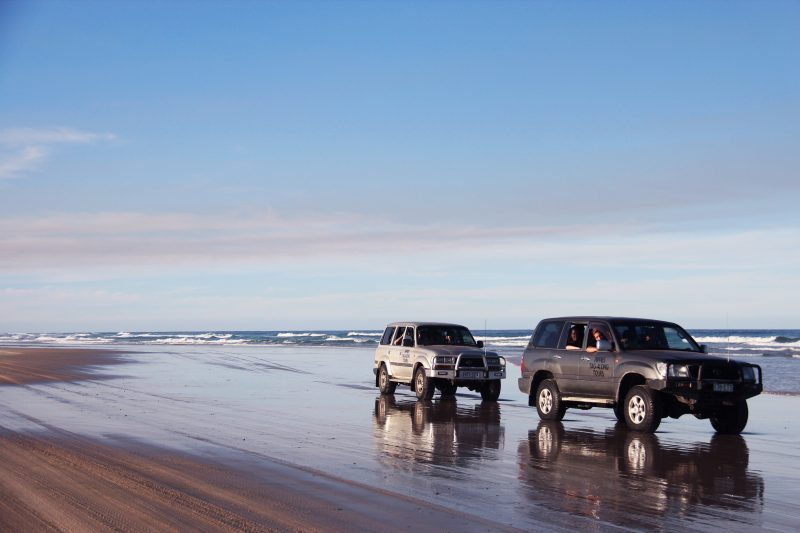 Pippies Fraser Island Tours