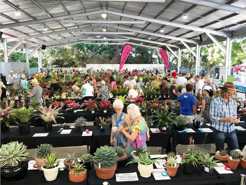 Plant Sale at Carrara Markets