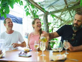 Tropical Fruit wine Tasting at Shannonvale Winery