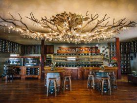 winery, queensland, cellar door, weddings, functions, Preston Peak