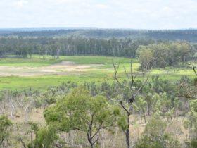 Open woodland of Princess Hills, Girringun National Park