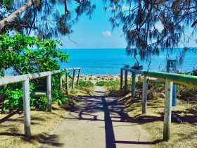 Beach access path, blue ocean and casuarina trees