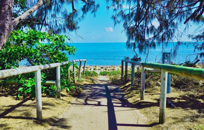 Beach access path, blue ocean and casuarina trees