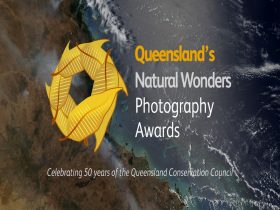 Celebrating 50 years of the Queensland Conservation Council