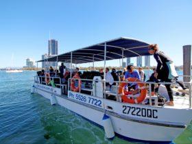 Gold Coast Dive Boat