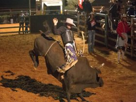 Quilpie Show & Rodeo