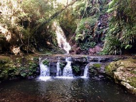Elabana Falls - Lamington National Park