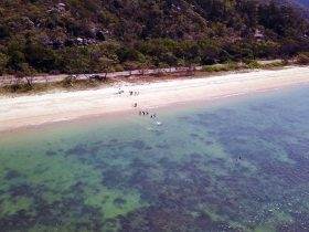 Aerial view of beach at Magnetic Island