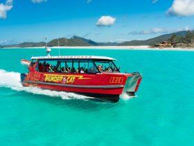 Whitsundays, Airlie Beach, Beach, Whitehaven, Whitehaven beach, Airlie Beach, Day Trip, Boat, Coral