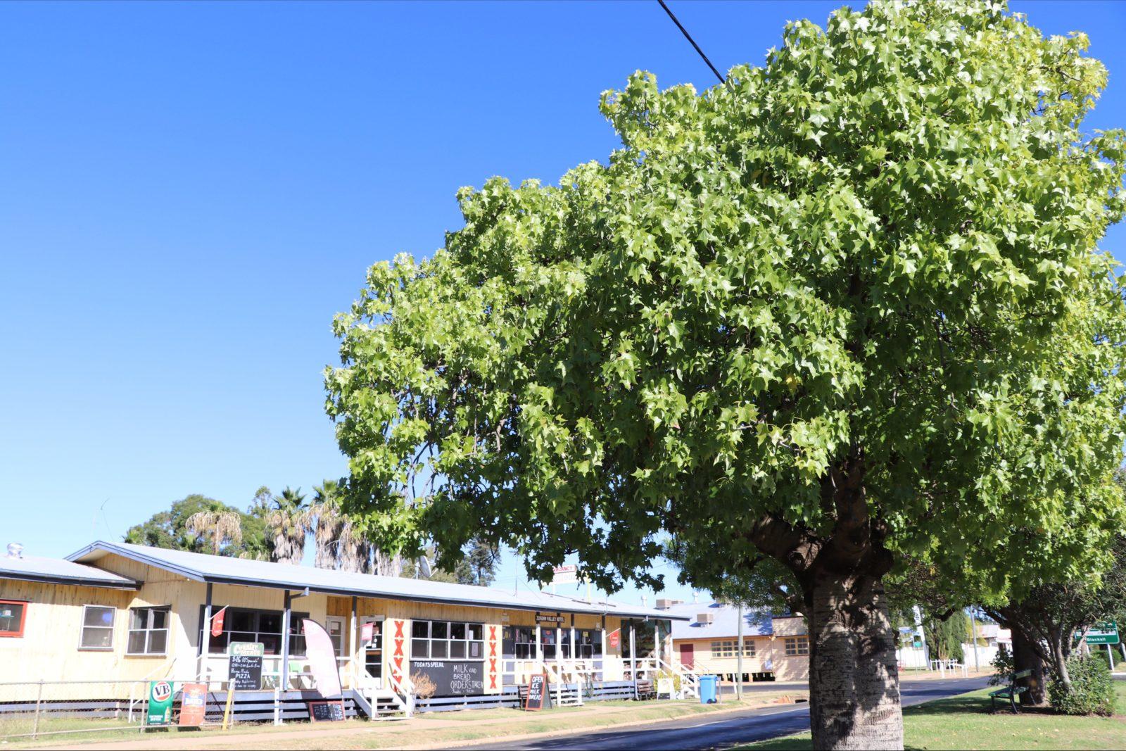 Jericho Main Street