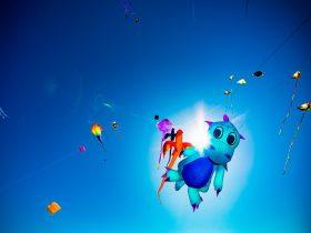 World-class kite displays
